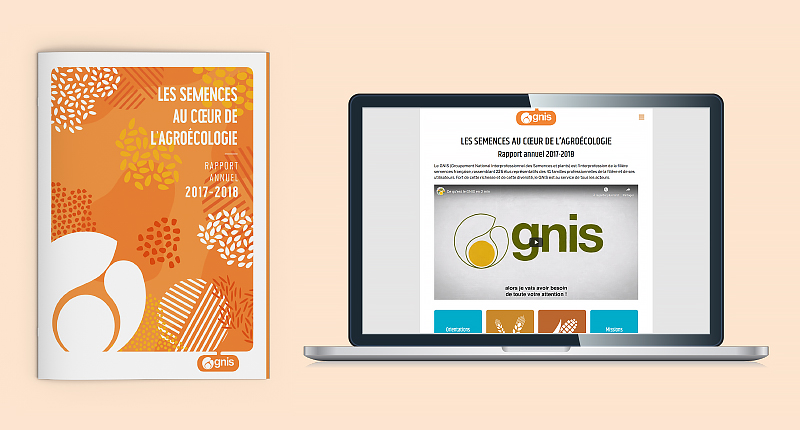 gnis-rapport-annuel-2017-2018-1