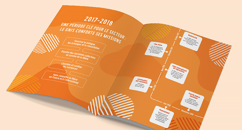 gnis-rapport-annuel-2017-2018-2